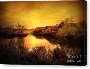 Golden Pond Canvas Print by Jacky Gerritsen