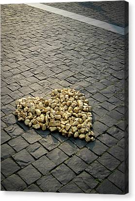 Golden Rocky Love Canvas Print by Mary Lee Dereske