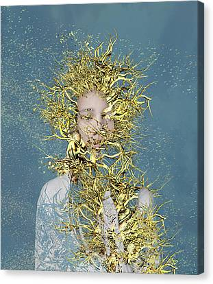 Golden Root  Canvas Print by Bojan Jevtic