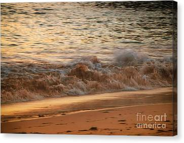 Golden Sand Beach Shore Canvas Print by Elizabeth Dow