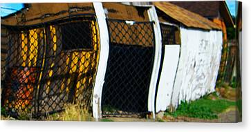 Golden Shed Canvas Print by Lenore Senior