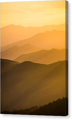 Golden Silhouettes  Canvas Print by Shelby Young