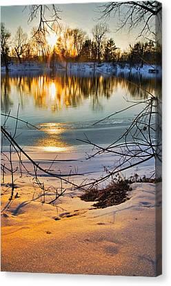 Golden Snow Canvas Print by Robert Pearson