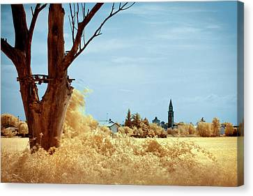 Golden Summer Canvas Print
