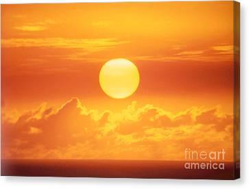 Golden Sunball Canvas Print by Bob Abraham - Printscapes