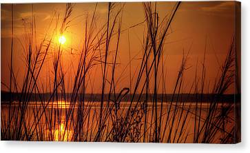 Golden Sunset At The Lake Canvas Print by John Williams
