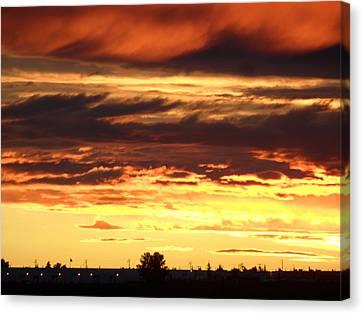 Golden Sunset IIi Canvas Print by Mark Lehar