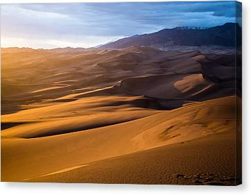 Golden Sunset In The Dunes Canvas Print by Adam Pender