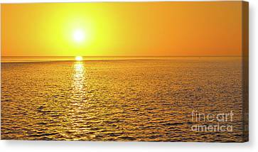 Golden Sunset On The Gulf Of Mexico Canvas Print by ELITE IMAGE photography By Chad McDermott