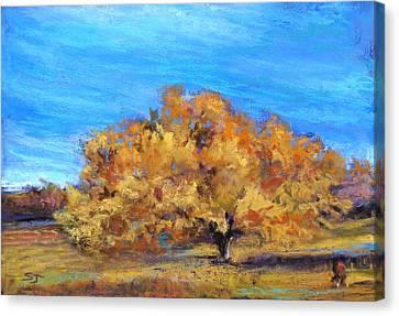 Golden Tree Canvas Print by Susan Jenkins