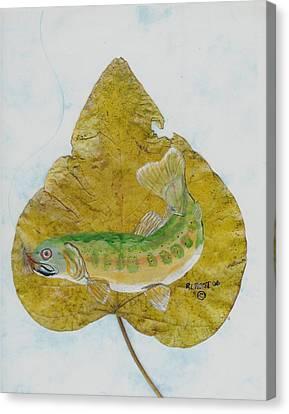 Golden Trout Canvas Print