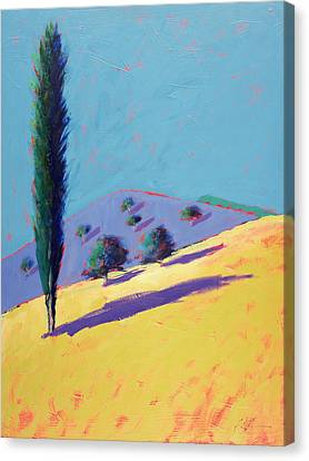 Golden Valley Canvas Print by Paul Powis
