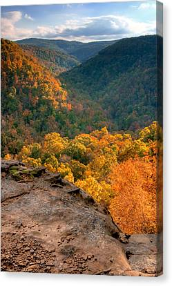 Golden Valleys Canvas Print by Ryan Heffron