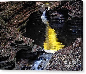 Canvas Print featuring the photograph Golden Water by Vilas Malankar