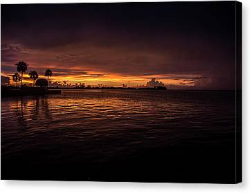 Golden Waters Canvas Print by Michael Frizzell