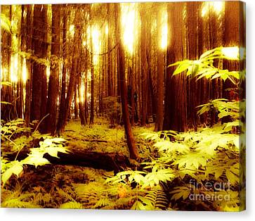 Golden Woods Canvas Print