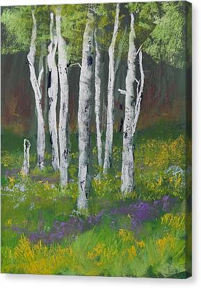 Goldenrod Among The Birch Trees Canvas Print by David Patterson