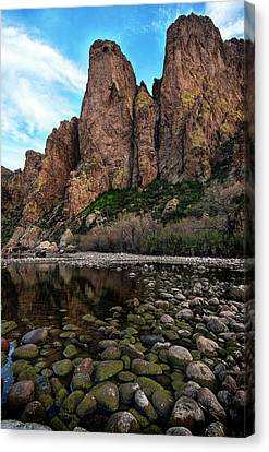 Canvas Print featuring the photograph Goldfield Mountain Mossy Rocks Vertical by Dave Dilli