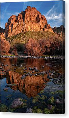 Canvas Print featuring the photograph Goldfield Mountain Reflections Vertical by Dave Dilli