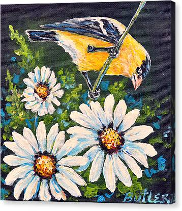 Goldfinch And Daisy Canvas Print by Gail Butler