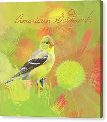 Canvas Print featuring the photograph Goldfinch Watercolor Photo by Heidi Hermes