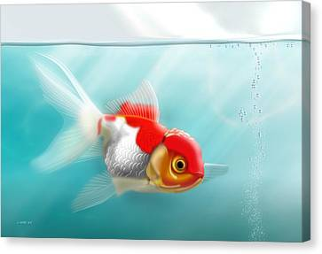 Goldfish 13x19 Canvas Print