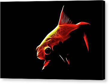 Goldfish 2 Canvas Print by Tilly Williams