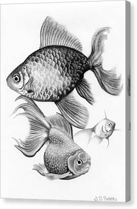 Scales Canvas Print - Goldfish by Sarah Batalka