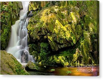Goldmine Brook Falls Chester Ma Canvas Print