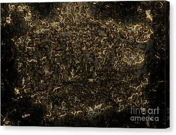 Goldspinner Canvas Print