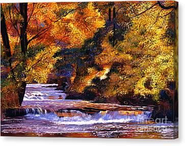Goldstream River Canvas Print by David Lloyd Glover