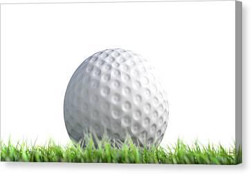 Golf Ball Resting On Grass Canvas Print