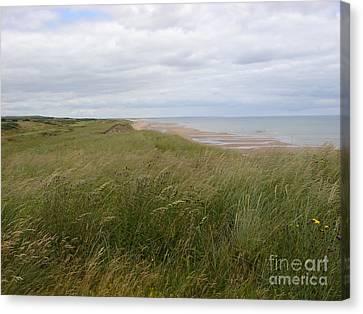 Golf In Scotland Canvas Print