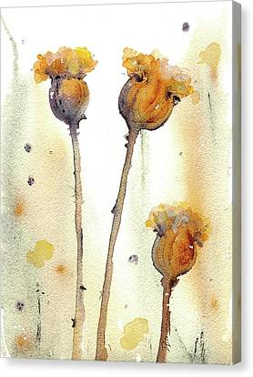 Canvas Print featuring the painting Gone To Seed by Dawn Derman