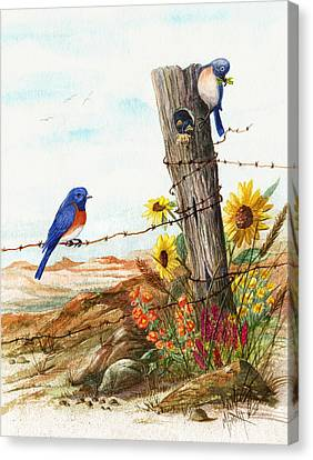 Gonna Find Me A Bluebird Canvas Print by Marilyn Smith