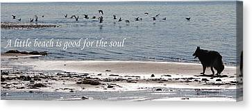 Good For The Soul Canvas Print