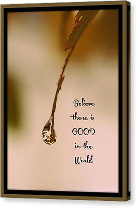 Good In The World Canvas Print by Trish Tritz