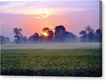 Good Morning Beautiful Canvas Print by Brittany H