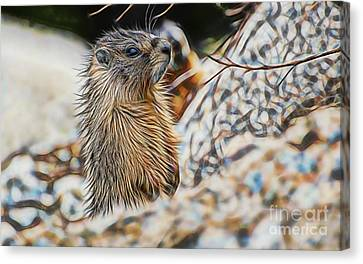 Groundhog Canvas Print - Good Morning by Marvin Blaine