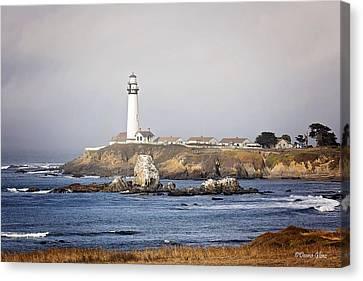 Good Morning Pigeon Point Canvas Print