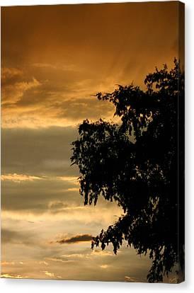 Good Night Canvas Print