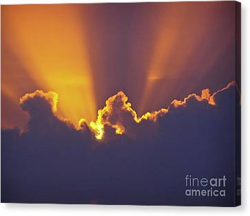 Canvas Print featuring the photograph Good Night Sunshine by Terri Waters