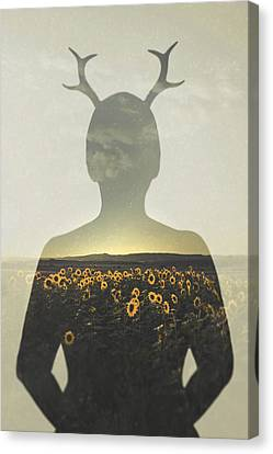 Sunflower Canvas Print - Goodbye Summer by Art of Invi