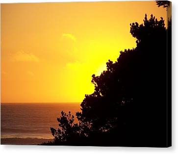Goodnight Sun Canvas Print by Angi Parks
