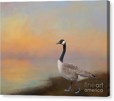 Kathy Rinker Canvas Print - Goose At Sunset by Kathleen Rinker