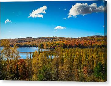 Goose Lake Canvas Print