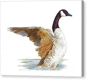 Goose Taking Flight Canvas Print