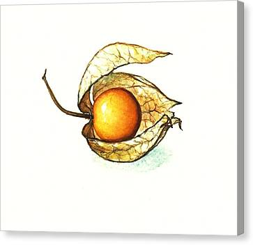 Canvas Print featuring the painting Gooseberry by Heidi Kriel
