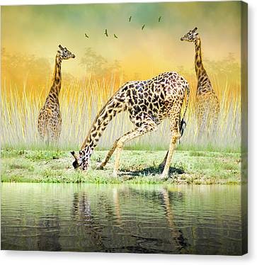 Gopher I Know I Saw A Gorpher Canvas Print by Diane Schuster