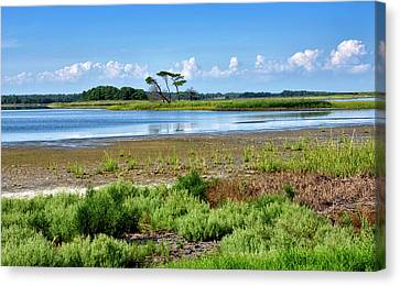 Gordons Pond At Cape Henlopen State Park - Delaware Canvas Print by Brendan Reals